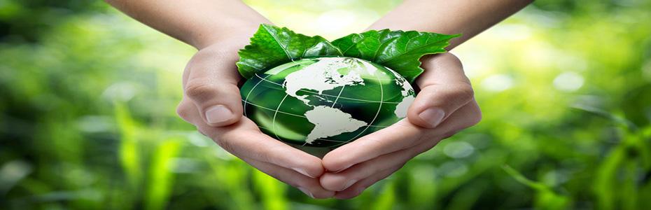 5 Начина да сте екологични без (почти) да си мърдате пръста